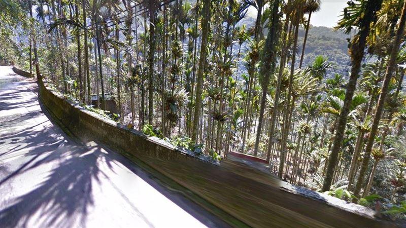 嘉義小貨車翻落20公尺山坡 60歲男無呼吸心跳急送醫