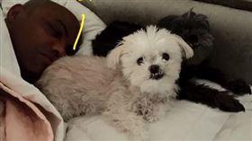 2隻愛犬呢?巴克利淚回:都過世了 NBA,Charles Barkley,養狗,安樂死 翻攝自推特