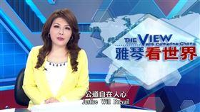 英情侶台灣聲譽!張雅琴「5分鐘全英文」嗆爆《BBC》(圖/翻攝自年代新聞YouTube)