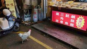 鹽酥雞,貴客,器官捐贈,新鮮,寵物雞(翻攝自 爆廢公社二館)
