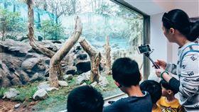 新竹動物園(新竹市政府提供)