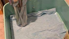 紙抹布,好市多,發霉,隱藏,清潔用品(翻攝自 Costco好市多 商品經驗老實說)