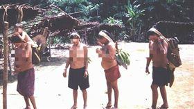 部落,肺炎,首例,確診,巴西(圖/翻攝自維基百科)