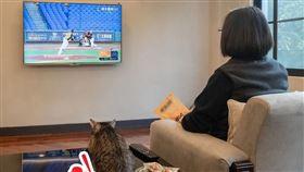 蔡英文在臉書曬出和蔡想想一起看棒球的照片。(圖/翻攝自蔡英文粉絲團)
