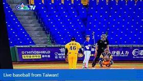 ▲海曼在14日轉發棒球在台灣開打的消息。(圖/取自推特)
