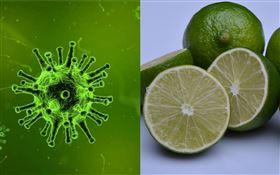 檸檬茶 病毒