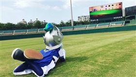 富邦悍將吉祥物富藍奇用新莊球場螢幕玩動物森友會。(圖/富邦悍將提供)