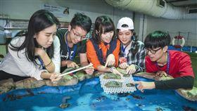 魚你同行-珊瑚王國館後場參觀。(圖/國立海洋生物博物館提供)