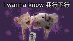 小豬,海巡署,羅志祥,周揚青(翻攝自 海巡署 臉書)