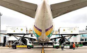 客機載貨。(圖/翻攝自林佳龍臉書)
