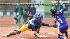 「台灣企業女子壘球聯賽」/翻攝畫面