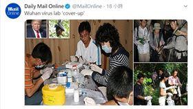 心虛?武漢實驗室「0防護做蝙蝠實驗」 爆紀錄過程全銷毀 圖/翻攝自MailOnline 推特 https://twitter.com/MailOnline/status/1256854359775854593