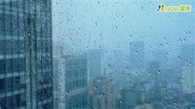 名家專用/NOW健康/中醫師陳瑞聲表示,溫暖潮溼的環境是塵蟎孳生的溫床,容易入侵人體鼻腔、眼睛、耳朵。(勿用)