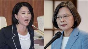 王鴻薇、蔡英文(組合圖/資料照、總統府提供)