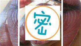 鮪魚,人臉,吳郭魚,岡山,高雄