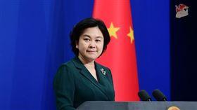 中國外交部發言人華春瑩 (翻攝自中國外交部網站)