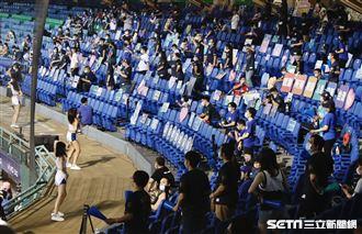 新莊棒球場首場開門比賽,球迷梅花座熱情加油。(圖/記者林聖凱攝影)