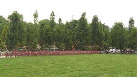 城市綠美學 五股垃圾山變身綠色樂園
