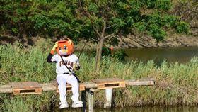 ▲統一獅吉祥物萊恩到漁光島找魚頭君。(圖/統一獅球團提供)
