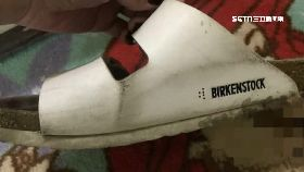 鞋標詭異碼1200