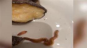 3000元大餐「鮑魚爬出2隻蟲」 網友驚:這2隻更貴 圖/翻攝自微博