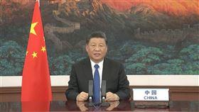 習近平說話了!「中國疫情公開、透明」讚譚德塞有重大貢獻