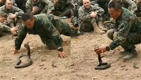 影/眼鏡蛇攻擊姿態 士兵徒手抓蛇頭 眼鏡蛇,士兵,抓蛇 翻攝自IG sportscenter