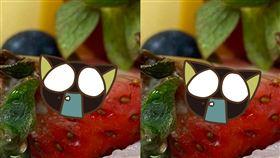 民眾買到草莓發霉的蛋糕,但店家去堅稱「凍傷」。(圖/翻攝自爆怨公社)