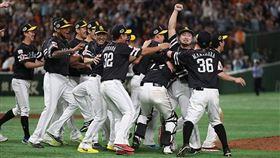 ▲日本職棒將在6月19日開打。(圖/翻攝自日本野球機構推特)