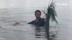 水淹田未退1800