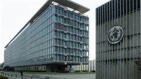 世界衛生組織(圖/WIKI)