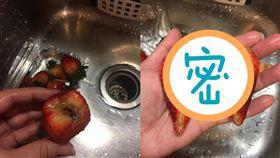 草莓,發霉,超市,空運(翻攝自 爆怨公社)