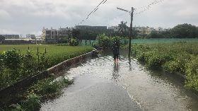 豪雨襲雲林 低窪地區淹水