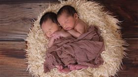 ▲雙胞胎(圖/翻攝自pixabay)