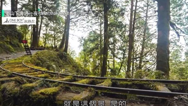 CNN評選全球最美小路在台灣! 「見晴古道」美翻如仙境