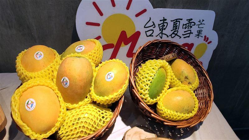 夏雪芒果上市了!首批預購400箱 搶攻香港黃金週美食節 | 生活 | 三