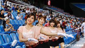 桃園棒球場球迷在觀眾席熱情加油,啦啦隊女孩。(圖/記者林聖凱攝影)