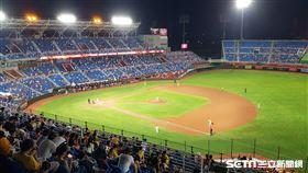 桃園棒球場內野完售,開放左外野看台。(圖/記者劉彥池攝影)