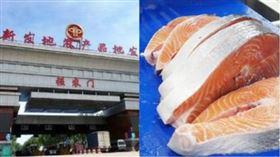 北京新發地批發市場,鮭魚,組合圖