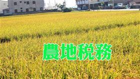 落實農舍用地臨界臨路,以確保農業生產環境完整及永續經營(圖/資料照)