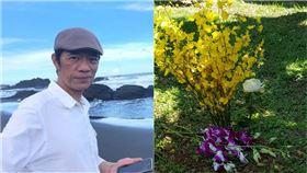 吳朋奉,樹葬(圖/翻攝自臉書、金熙國際提供)