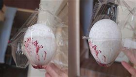 雞蛋,蛋殼,滲血,輸卵管,惡臭(翻攝自 Dcard)