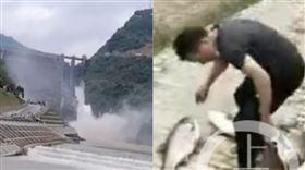水庫洩洪!陸村民擠下游「搶撈大魚」(圖/翻攝自上游新聞)