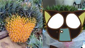 DCARD,有網友分想買鳳梨的趣事,到底算幾顆?(圖/翻攝自Dcard)