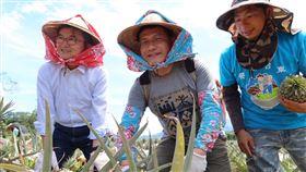 林佳龍體驗當半日農夫。(圖/觀光局提供)