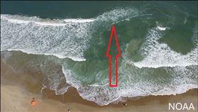離岸流(翻攝自NOAA,美國國家海洋暨大氣總署)