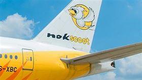 泰國廉價航空公司酷鳥航空27日表示,董事會決定解散公司進行精算。(圖/翻攝自酷鳥航空網頁nokscoot.com)