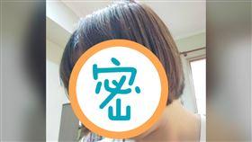 百元剪髮,頭髮,特色,髮型(圖/翻攝自PTT)