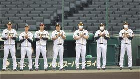 ▲阪神虎教練團。(圖/美聯社/達志影像)