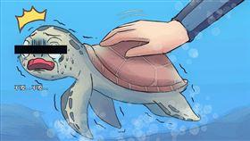 海洋委員會說,龜殼是其骨骼結構的一部分,龜殼上是它的脊椎和肋骨,「厚度大概就是像寶特瓶的厚度差不多,沒錯,就是這麼薄」。(圖/翻攝自海洋委員會臉書粉專)